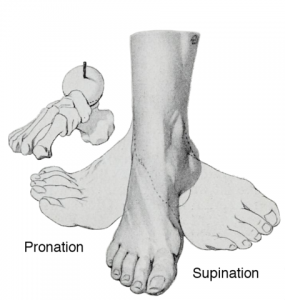 dallas ankle doctors pronation supination